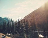 "Landscape Photography -  Mountains and Trees - Nature - Blur  - Home Decor - Fine Art Photography - "" TREE VALLEY """