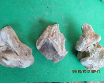 Three Agatized Petrified Wood Limb Cast White Beige Natural Free Form Stones 33