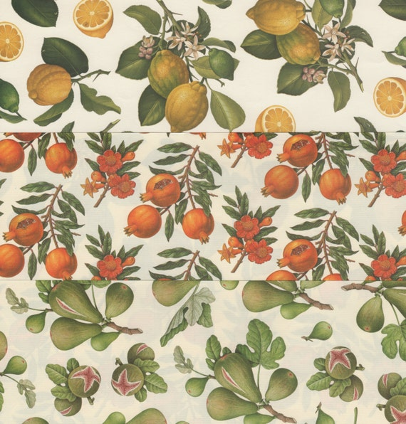 12x12 Italian Decorative Papers Featuring Exotic Fruits for Bookbinding Scrapbooking Paper Arts Collage