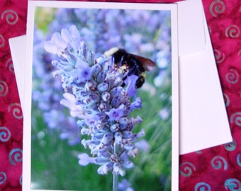 Bee and Lavender -  Card - Blank Inside