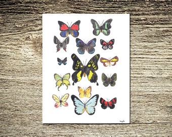 Butterfly Grouping Lifelike Multicolored Watercolor Art Print:Butterfly Kisses II