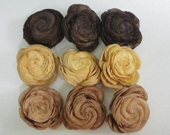 Sola Shell flowers  -- SET of 30 - browns