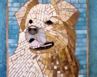 Dog Jazz pet portrait Border Collie Mosaic DCBHF