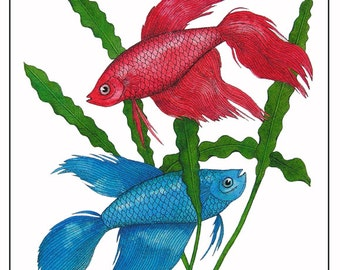 "10"" x 8"" Watercolor Art Print Illustration Siamese Fighting Fish Blue Red Nature Wildlife Art"