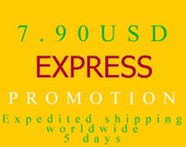 PR-EXPRESS PROMOTION Expedited Shipping worldwide 4-6 days-7.1USD