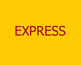 EXPRESS Charge for 1KG Shipping Worldwide