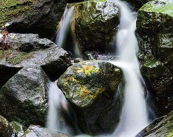Waterfall Photo, Scenic wall art, Office decor, Green moss, Rocky run, Available in many Sizes, silky water streaks