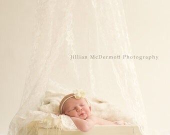 Ivory Lace Canopy with ring to hang.  Perfect for Photo Props