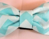 Dog Flower or Dog Bow Tie or Cat Flower or Cat Bow Tie - Blue Chevron - Free Shipping
