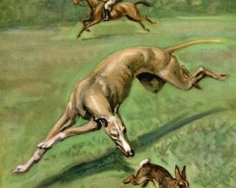 Popular Items For Vintage Greyhound On Etsy