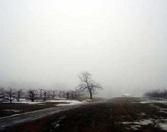 Londonderry Fog 4