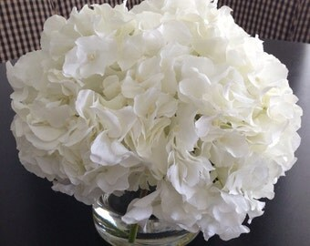 Fine Silk Floral Arrangement White Hydrangea x3 In Cylinder with Illusion Faux Water