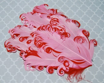 Curly Feather Pad - Two Tone Pink on Red  FP214 - (1 piece)
