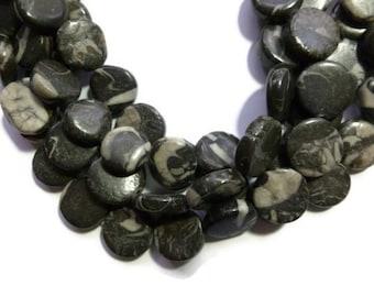 Zebra Jasper - Black and White - Coin - Full Strand - 21 beads