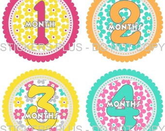 Baby Month Stickers Plus FREE Gift Girl Colorful Flower Flowers PRECUT Monthly Milestone Age Stickers Photo Prop 1-12 or 13-24 Months