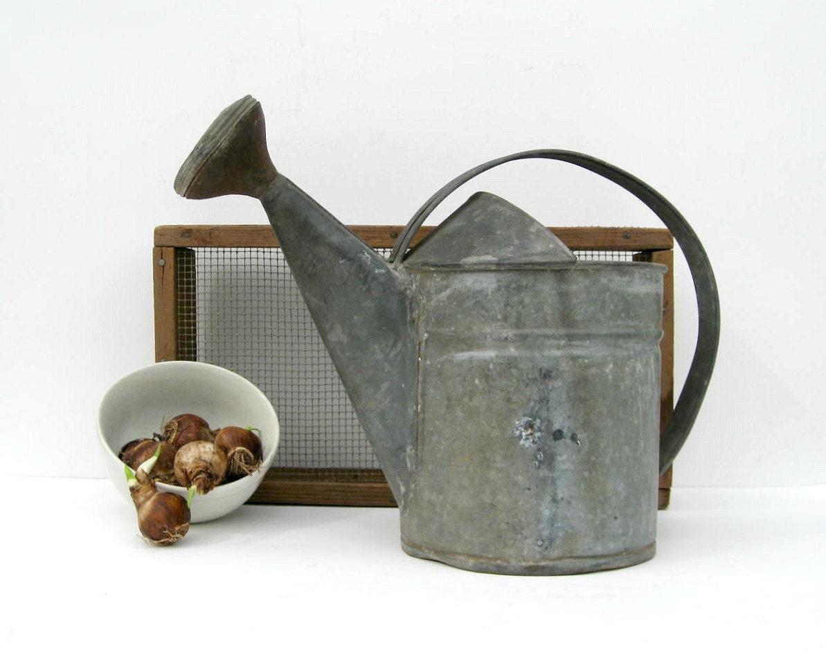 Vintage Watering Can Galvanized Metal Rustic Garden Decor