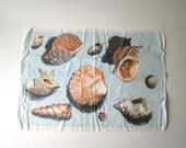 french vintage kitchen towel, seashells, beach theme, french kitchen linens, vintage beach tea towel, french kitchen linens