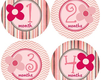 Monthly Baby Girl Stickers Baby Month Stickers, Monthly Bodysuit Sticker, Monthly Stickers Flowers (Pheobe)