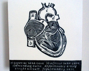 The Knowing Heart, Relief Print on Wood Panel, encaustic, anatomical heart, latin text, hand pulled print, original art