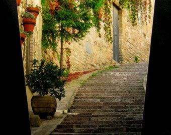 SET Wastebasket and Tissue Box Cover - Steps & Red Ivy in Assisi, Italy