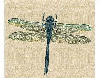 Dragonfly instant clip art Pastel insect digital download image for iron on fabric transfer burlap decoupage pillow paper craft No. 1858