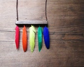 Rainbow Necklace, Feathers Wood Leather