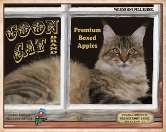 Maine Coon Cat Small Wooden Crate