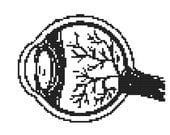 Counted Cross Stitch Kit - Eye Anatomy