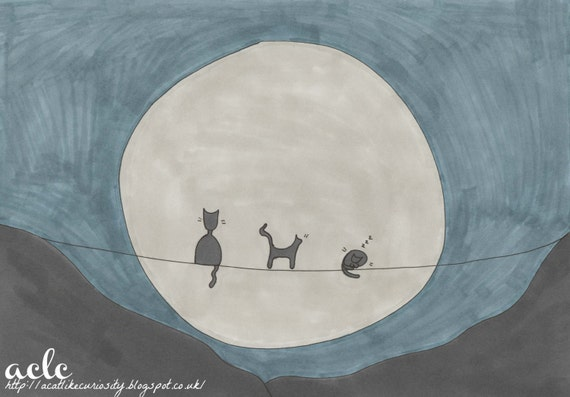 Kitties By Moonlight
