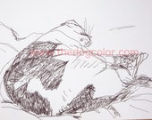 Original pen drawing of CAT sketch Ready to Ship