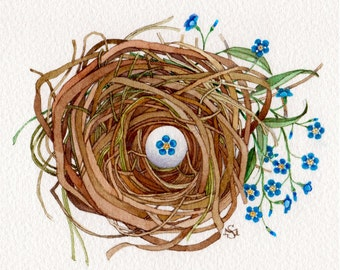 forget me not flower nest watercolor art painting