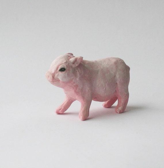 Pink baby teacup pigs - photo#21