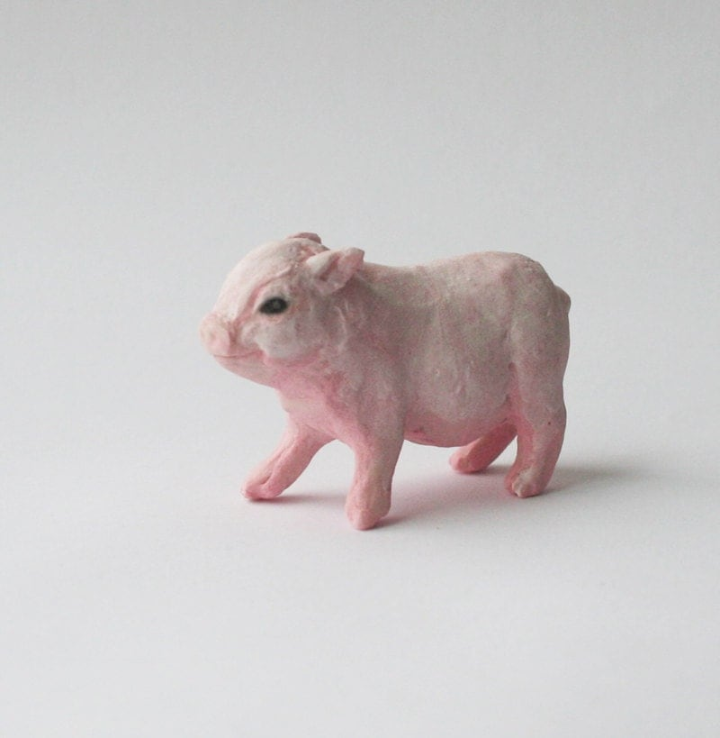 Baby Mini Pigs | www.imgkid.com - The Image Kid Has It!