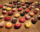 50 Natural Seed Beads, Heirloom Corn Beads, Small Beads, Mixed Colors and Types