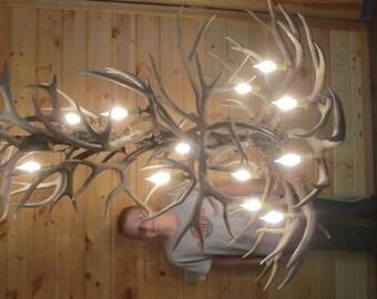 Large Muledeer antler chandelier, 14 lights, Real Antler, Proudly made in U.S.A.