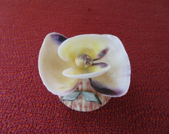 Shell Art Flower Vintage Folk Art Hand Crafted Funky and Kitsch