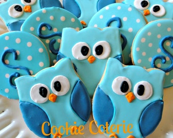 Owl Decorated Cookie Favors Birthday Party Baby Shower Cookie Favors One Dozen