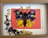 Pressed flower collage with buttercups and violas that form a butterfly  matted and framed.