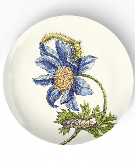 1600's botanical artwork II melamine plate