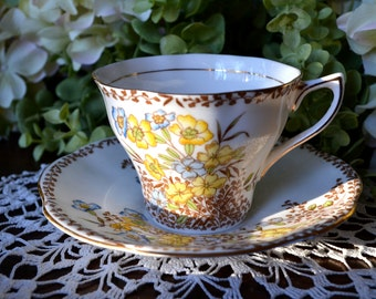 Rosina Fine Bone China Tea Cup and Saucer, Sepia and Blue Yellow Floral, Gold Gilt, England