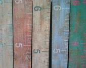 Repurposed Wood Growth Chart Large Ruler