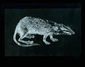 RAT Leather Patch Back Patch Screen Printed Sew On Patch Punk Patch Animal Patch Rat Art