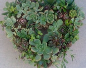 "SUCCULENT WREATH KIT, Heartshape Wreath Kit - 11"" wreath form, 65 succulent cuttings, 65 floral pins"