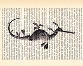 Pretty Weedy Seadragon Vintage Art Print on Upcycled Antique Book Page