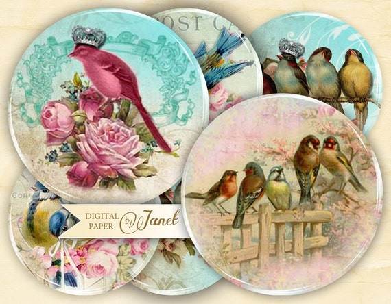 Bird Kingdom - 2.5 inch circles - set of 12 - digital collage sheet - pocket mirrors, tags, scrapbooking, cupcake toppers