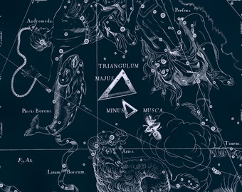 Constellation map, Zodiac, Antique prints, 135