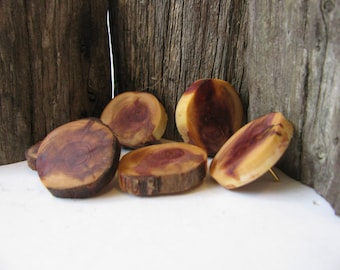 Six Wood thumb tacks  Push pins made of juniper wood.