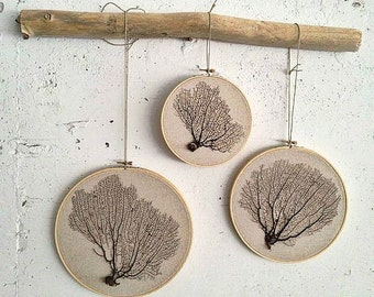 Framed natural Sea Fan coral hand-stitched stretched on birch wood embroidery hoop  neutral color