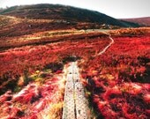 Ireland Landscape Photography Red Mountains of Ireland Home Decor Picture Print Wicklow