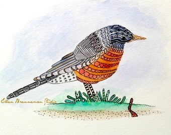 American Robin watercolor illustration